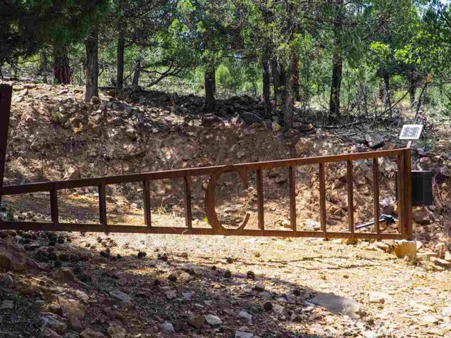 East Tract Shroyer Dr Laguna Vista, Rutheron, NM 87551 (MLS #201803851) :: The Very Best of Santa Fe