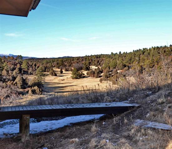 93 C County Road 342, Chama, NM 87520 (MLS #201803959) :: The Desmond Group