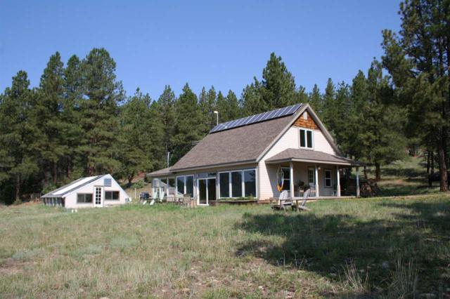 150 Forest Road 124, Cebolla, NM 87518 (MLS #201803963) :: The Desmond Group