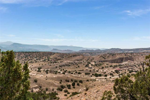 Lot 43 County Road 156, Abiquiu, NM 87510 (MLS #201803970) :: The Very Best of Santa Fe