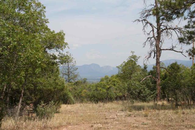 89 Laguna Vista Dr., Tierra Amarilla, NM 87575 (MLS #201803984) :: The Desmond Group