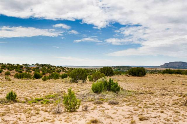 43 Camino Libre, Galisteo, NM 87540 (MLS #201804168) :: The Very Best of Santa Fe