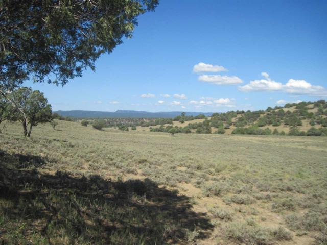 Lot 48, Unit 6 Ponderosa Sub: County Road 341 Ponderosa Subdi, Chama, NM 87520 (MLS #201804298) :: The Very Best of Santa Fe