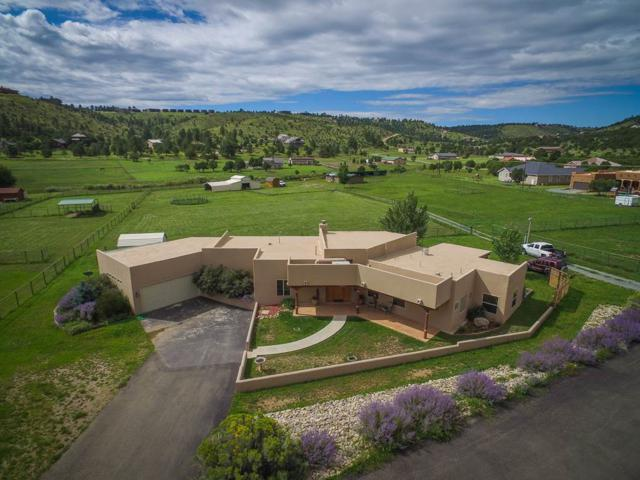 149 Saddleback Rd, Alto, NM 88312 (MLS #201804302) :: The Desmond Group