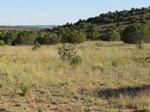 Camino Los Abuelos Between Lajara , Galisteo, NM 87540 (MLS #201804483) :: The Desmond Group