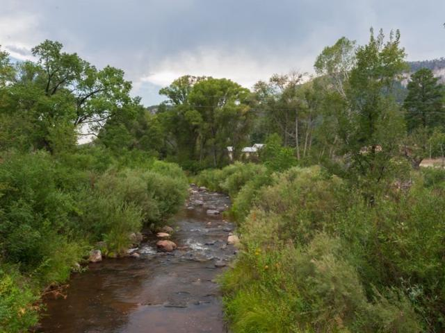 14 Lourdes Drive - 22.64 Acres, Jemez Springs, NM 87025 (MLS #201804504) :: The Desmond Group