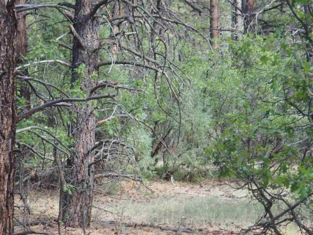 Lot 26 Block 3 Marco Rd Brazos Meadows , Chama, NM 87520 (MLS #201804518) :: The Very Best of Santa Fe