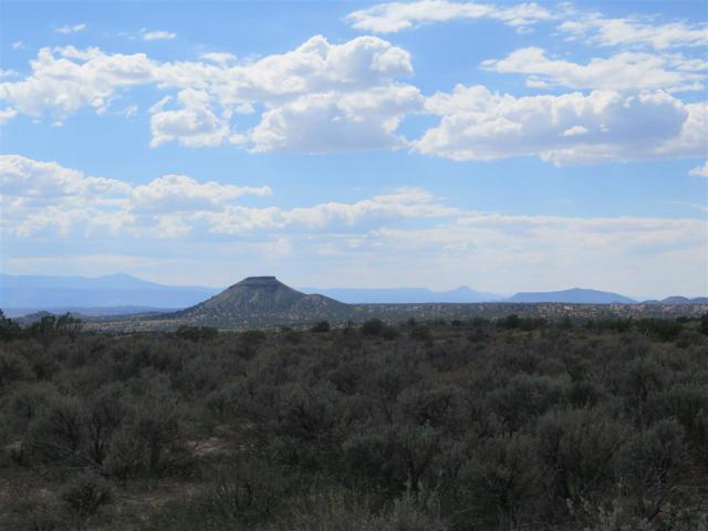 Tract 1 Highway 285, Ojo Caliente, NM 87549 (MLS #201804556) :: The Very Best of Santa Fe