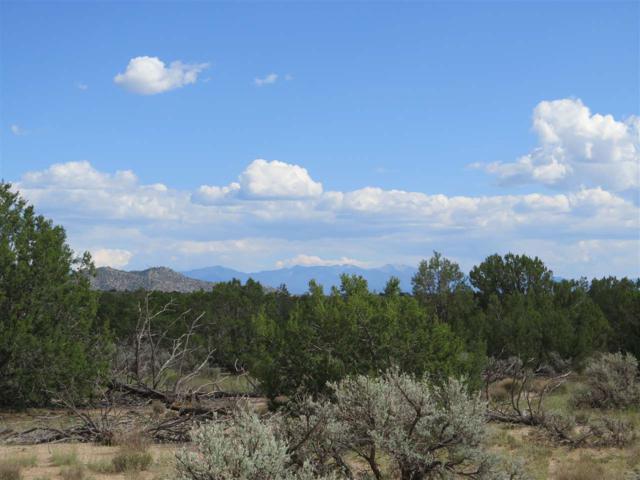 Tract 3 Highway 285, Ojo Caliente, NM 87549 (MLS #201804557) :: The Very Best of Santa Fe