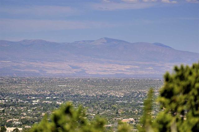 205B N. Double Arrow Rd Lot 16, Santa Fe, NM 87505 (MLS #201804652) :: The Very Best of Santa Fe