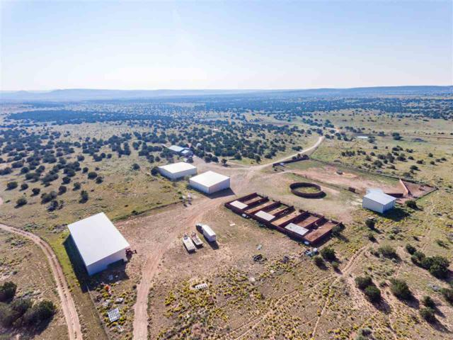 5606 S Highway 55, Mountainair, NM 87036 (MLS #201804795) :: The Desmond Group