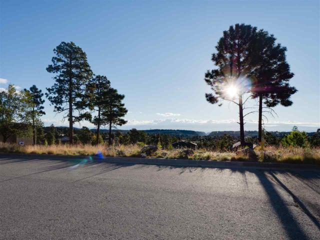 1675 Sereno, Los Alamos, NM 87544 (MLS #201804796) :: The Desmond Group