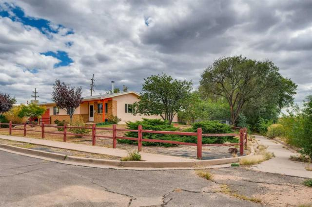 3340 Siringo Rd, Santa Fe, NM 87507 (MLS #201804844) :: The Desmond Group
