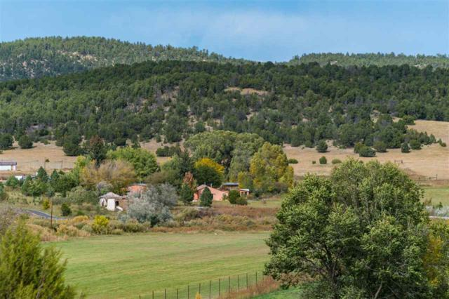 548 State Hwy 161, Buena Vista, NM 87712 (MLS #201804852) :: The Desmond Group