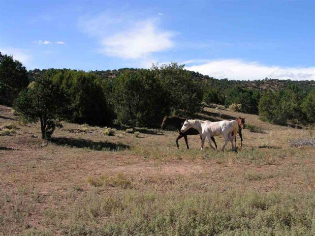 17 Ranchos Canoncito, Santa Fe, NM 87508 (MLS #201804904) :: The Very Best of Santa Fe