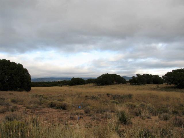 16 Churchill, Santa Fe, NM 87508 (MLS #201804986) :: The Very Best of Santa Fe