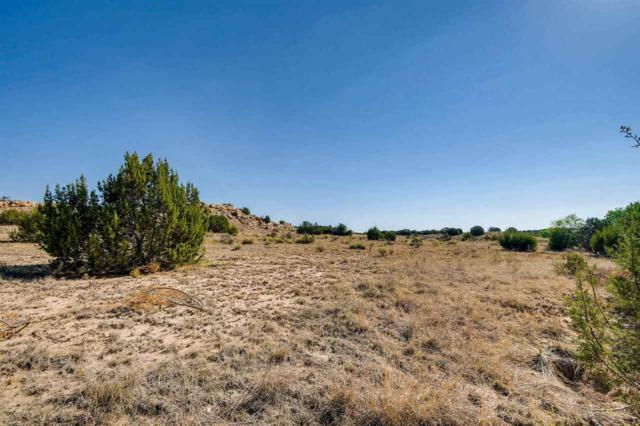 24 Camino Libre, Galisteo, NM 87540 (MLS #201805058) :: The Very Best of Santa Fe