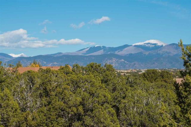 12 Luz Del Dia, Santa Fe, NM 87506 (MLS #201805062) :: The Desmond Group