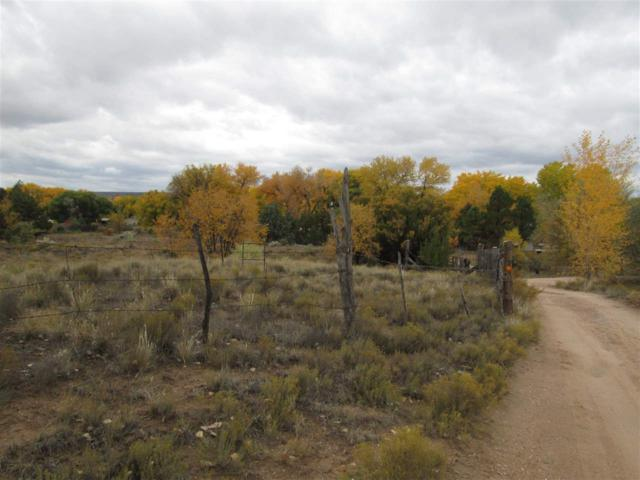 12 Calle De Los Alamos, El Rancho, NM 87506 (MLS #201805085) :: The Very Best of Santa Fe