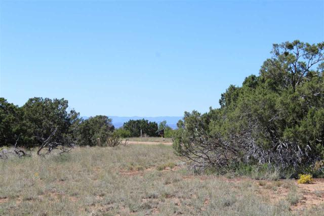 5 Dovela Place, Eldorado, NM 87508 (MLS #201805103) :: The Desmond Group