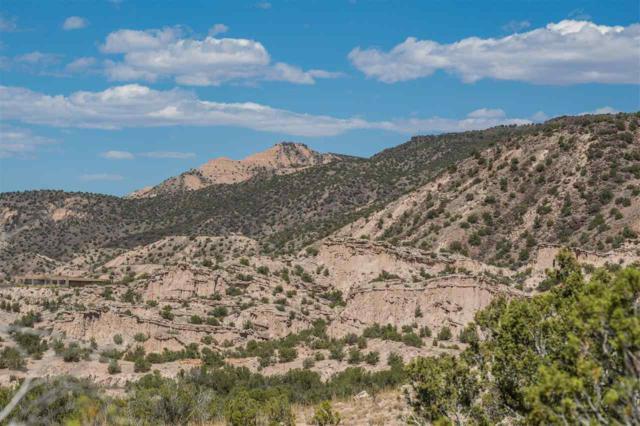 186 Cerrito De Baca, Ojo Caliente, NM 87539 (MLS #201805105) :: The Very Best of Santa Fe
