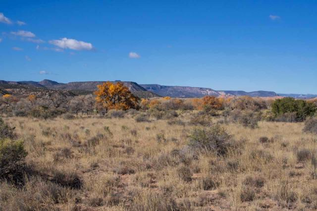 Unit 10 Block 3, Lots 35 & 36, Medanales, NM 87548 (MLS #201805298) :: The Desmond Group
