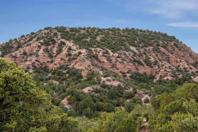 Sugarloaf Lane, Santa Fe, NM 87501 (MLS #201805439) :: The Desmond Group