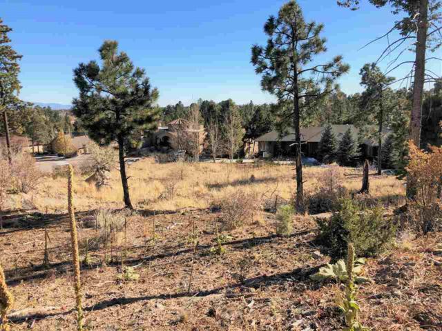 1620 Sonrisa, Los Alamos, NM 87544 (MLS #201805462) :: The Desmond Group