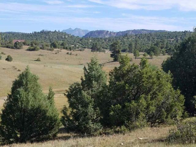 Lot 14 Deer Trail, Chama, NM 87520 (MLS #201805496) :: The Very Best of Santa Fe