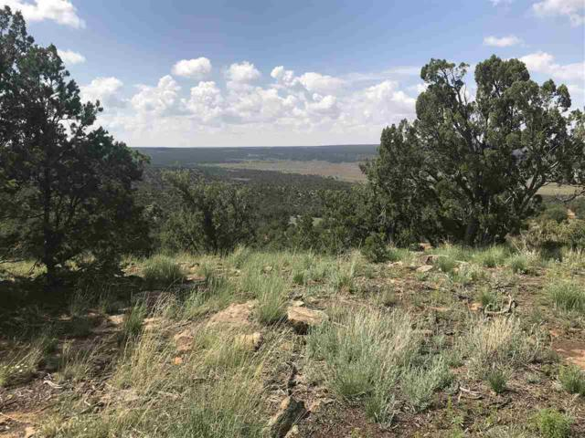 Forest 124A Road, Glorieta, NM 87535 (MLS #201805545) :: The Desmond Group