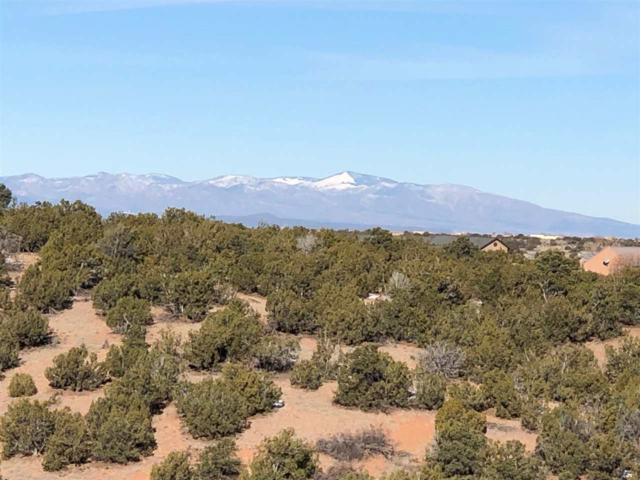 21 Camino Del Gallo, Santa Fe, NM 87540 (MLS #201805568) :: The Very Best of Santa Fe