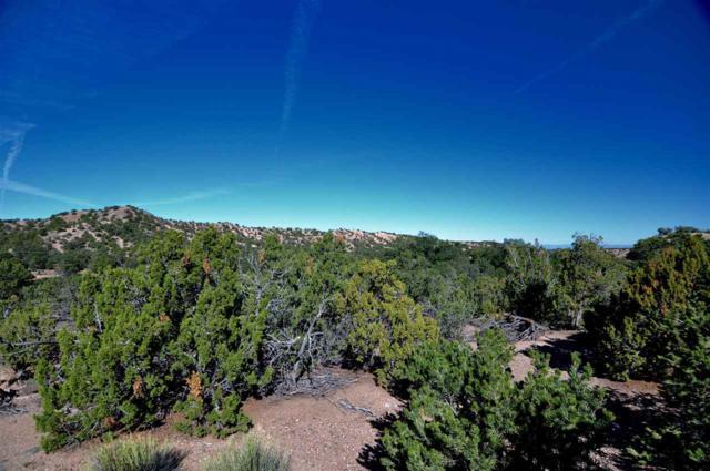 12 Meredith, Santa Fe, NM 87506 (MLS #201805582) :: The Desmond Group