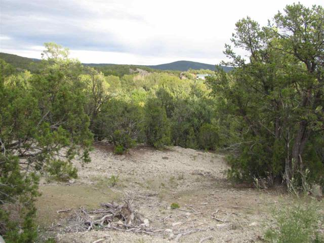 Tract 3 & 4 Camino Rincon, Pecos, NM 87552 (MLS #201805589) :: The Very Best of Santa Fe