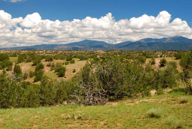 65 Chisholm Trail, Lot 54, Santa Fe, NM 87506 (MLS #201805609) :: The Very Best of Santa Fe