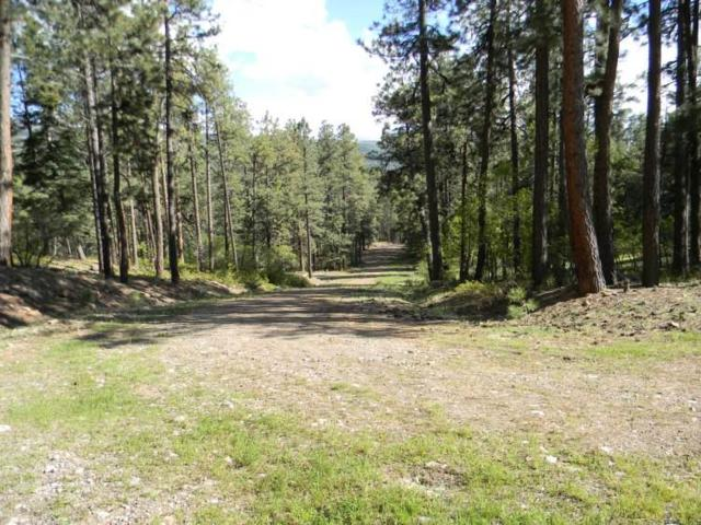 McElvaine Tract The Brazos Canyon, Chama, NM 87520 (MLS #201805675) :: The Very Best of Santa Fe