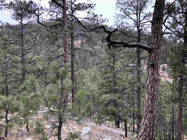 14 Upper Pond, Santa Fe, NM 87505 (MLS #201805736) :: The Desmond Group