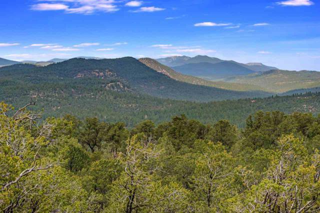 Lot 8 70 The Cliffs View, Glorieta, NM 87535 (MLS #201900008) :: The Desmond Group