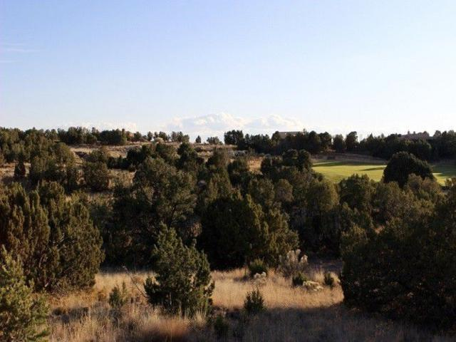 7 Deer Stalker (Lot 601, Club Estates), Santa Fe, NM 87506 (MLS #201900018) :: The Very Best of Santa Fe