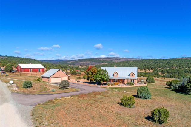 220 La Para Road, Estancia, NM 87016 (MLS #201900070) :: The Very Best of Santa Fe