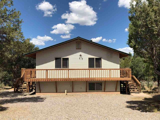 17 N. Leaning Pine Pinon Ridge, Los Ojos, NM 87551 (MLS #201900182) :: The Bigelow Team / Realty One of New Mexico