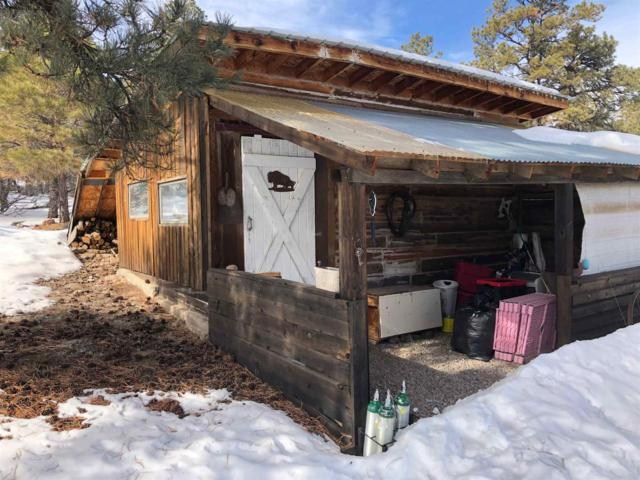 35 Parkview Hills, Los Ojos, NM 87551 (MLS #201900315) :: The Desmond Group