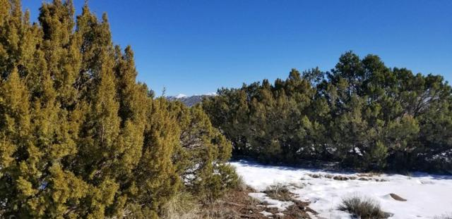 0 North Highway 14, Sandia Park, NM 87047 (MLS #201900316) :: The Desmond Group