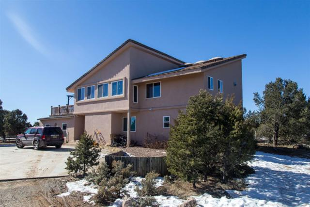 124 B Piedra Loop, Los Alamos, NM 87547 (MLS #201900458) :: The Desmond Group