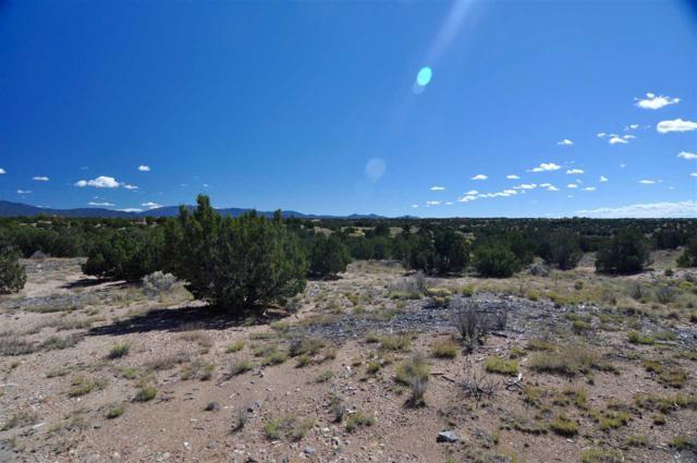 31 Calle Ventoso, Santa Fe, NM 87506 (MLS #201900504) :: The Desmond Group