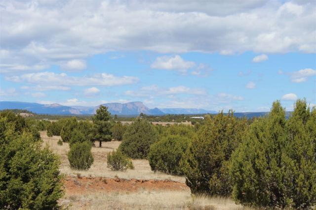 Santa Fe Trail Ranch, Las Vegas, NM 87701 (MLS #201900509) :: The Desmond Group