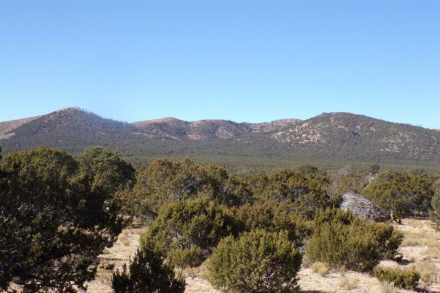0 Great House Road, Corona, NM 88318 (MLS #201900583) :: Berkshire Hathaway HomeServices Santa Fe Real Estate