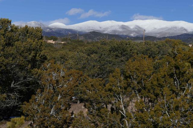1059 Encantado Drive, Santa Fe, NM 87501 (MLS #201900597) :: The Desmond Group