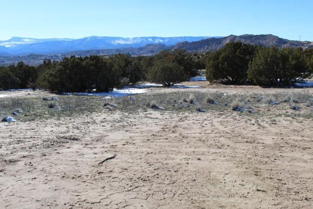 TBD Roadrunner Ln, Ojo Caliente, NM 87549 (MLS #201900653) :: The Bigelow Team / Realty One of New Mexico