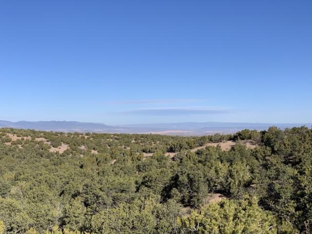 Lot 56 Monte Sereno Drive, Santa Fe, NM 87506 (MLS #201900742) :: The Desmond Group