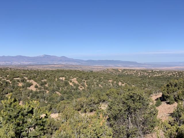 Lot 60 Monte Sereno Drive, Santa Fe, NM 87506 (MLS #201900747) :: The Desmond Group